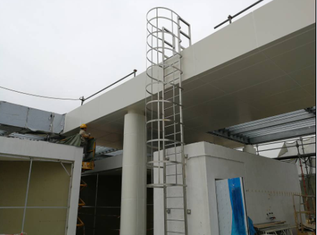 Stainless cat ladders & working platforms